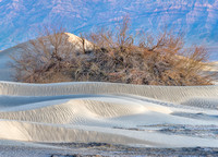 Death_Valley_2015-3